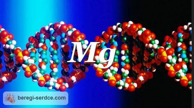 препараты магния для сердца: дозировка влияние магния на организм