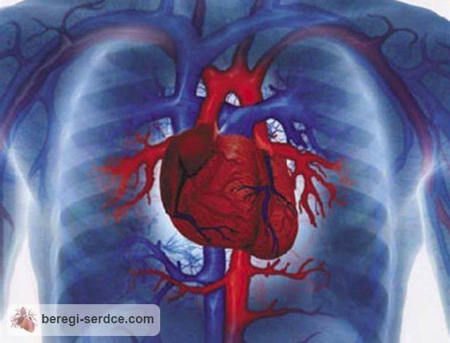 Заболевание миокардит: причины симптомы диагностика лечение