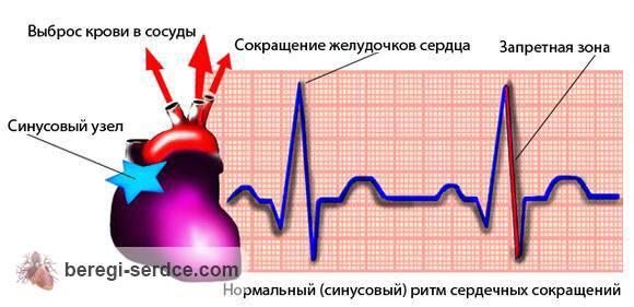 синусовая аритмия лечение препараты